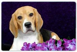 Canine Designs Beagle Tempered Glass Cutting Board - Small
